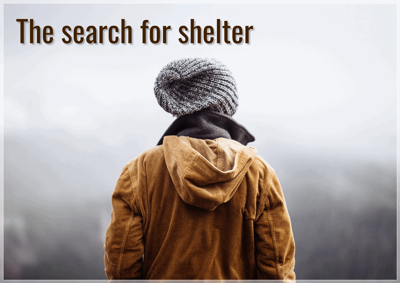 The search for shelter
